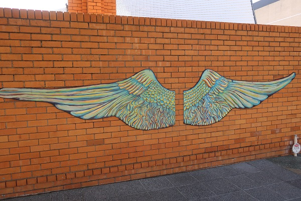 天使の羽の写真